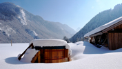 Chalet Chatelet chose a Northern Lights hot tub
