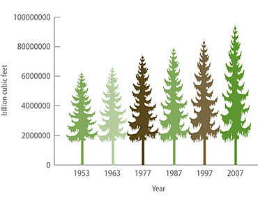 biomass-growth forest